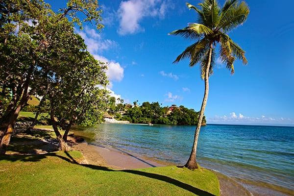 Día del Medio ambiente en Bahia Principe