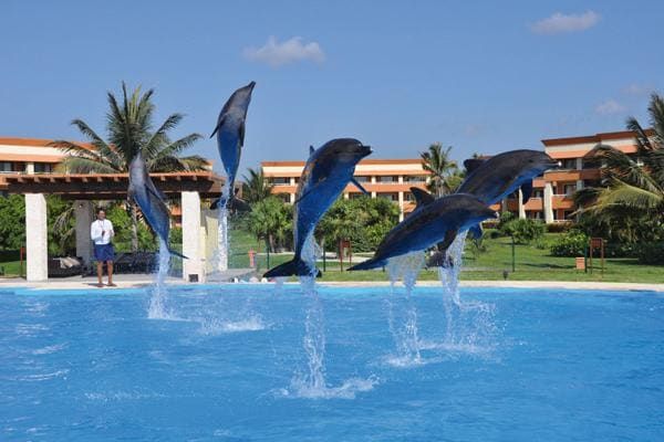 Dolphinaris at Grand Bahia Principe Coba