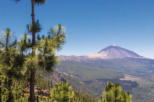 Teide National Park at Tenerife 3