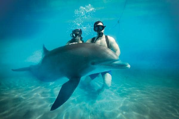 Things to do at Grand Bahia Principe Punta Cana