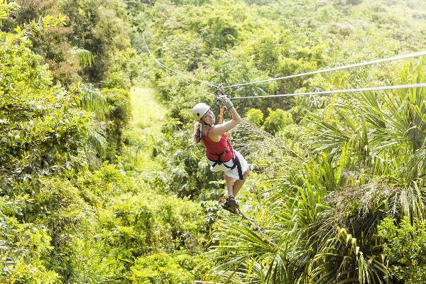 Mystic Mountain and Canopy Zip Line at Jamaica